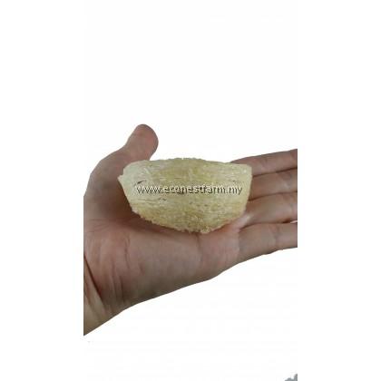 ECO Edible Bird Nest Gift 8s 燕窝礼盒净燕盏8粒装