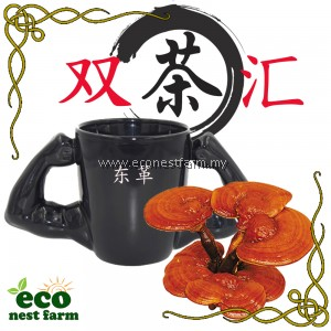 Double Tea Tongkat Ali Ganoderma 双茶汇