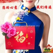 HAMPER CNY COLLAGEN BIRD NEST RED DATES GIFT BOX 新年礼盒 福燕饮 GB-7