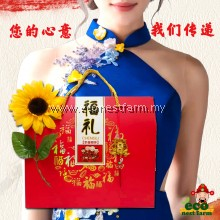 HAMPER CNY COLLAGEN BIRD NEST LONGAN GIFT BOX 新年礼盒 福燕饮 GB-6