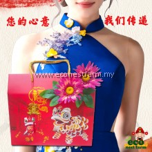 HAMPER CNY COLLAGEN BIRD NEST ORIGINAL GIFT BOX 新年礼盒 福燕饮 GB-5