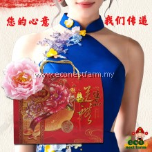 HAMPER CNY COLLAGEN BIRD NEST GOJI GIFT BOX 新年礼盒 福燕饮 GB-4