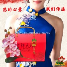 Hamper CNY Collagen Bird Nest Mix Gift Box 新年礼盒 福燕饮 GB-3
