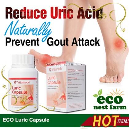ECO Luric Capsule Gout Uric Acid