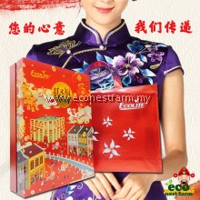 HAMPER CNY Gift Box Ecolite Luxury 聚福年礼盒 豪华版