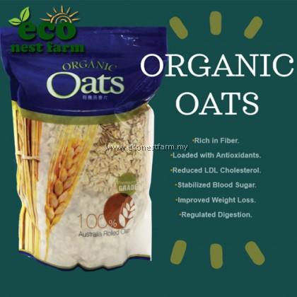 Organic Oat Premium Grade 有机燕麦片特级