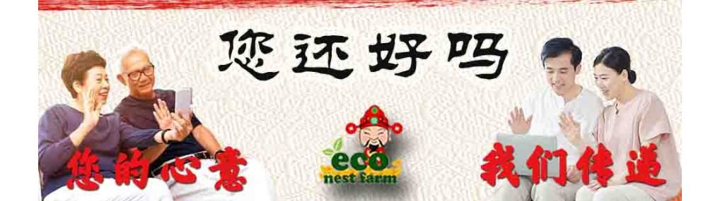 CNY Banner 2021 C