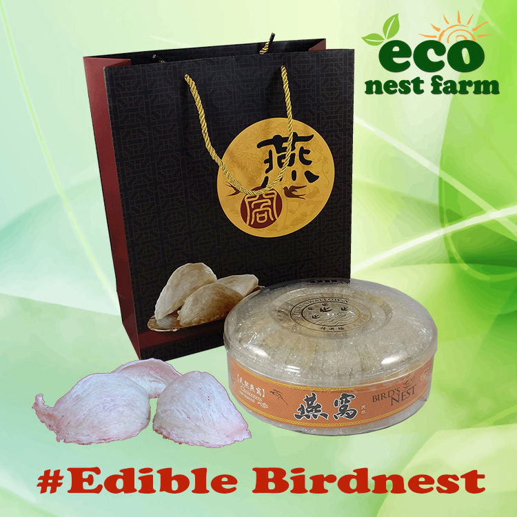 ECO Bird Nest Gift