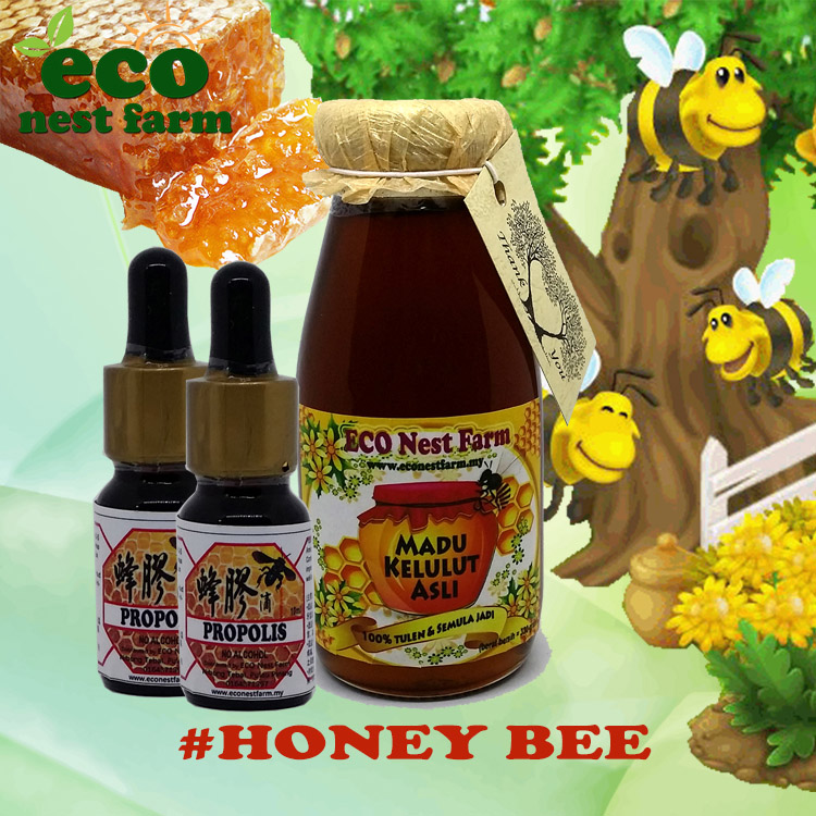ECO Honey Bee