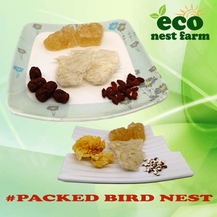 ECO Packed Bird Nest